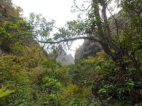 Monte del Agua